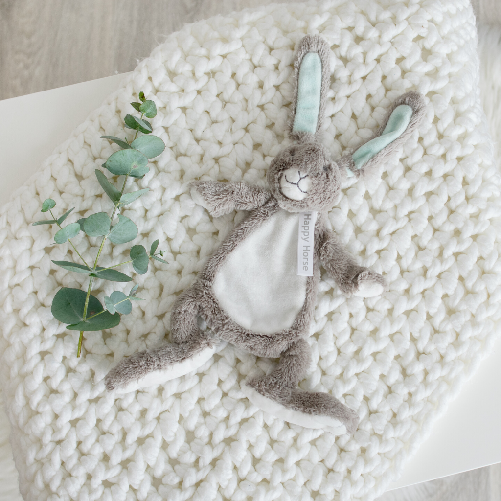 Grey Rabbit Tuttle