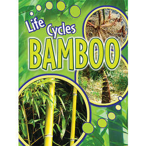 Bamboo (Life Cycles)