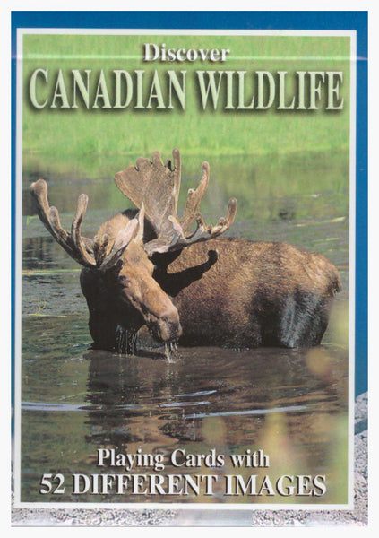 Discover Canadian Wildlife - playing cards