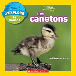 National Geographic Kids : J'explore le monde : Les canetons