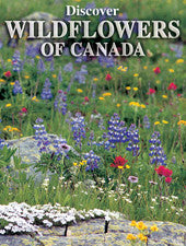 Discover Wildflowers of Canada - playing cards