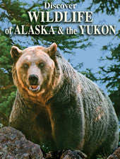 Discover  Wildlife of Alaska & the Yukon - playing cards