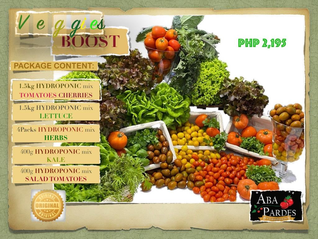 VEGGIES BOOST - Aba Pardes Vegetable and Salad Baskets