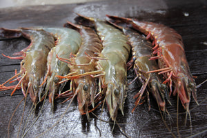 Black Tiger Prawns - Head On Shell On 30/40 Frozen Count (FROZEN) 2.5KG Box