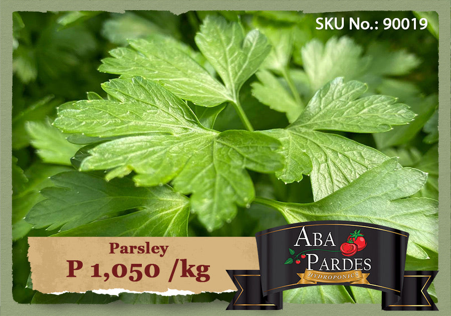 ABA PARDES HERBS Parsley 1kg