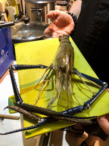 Fresh ULANG (Giant River Prawns) - Jumbo: 3-4 pcs per KG