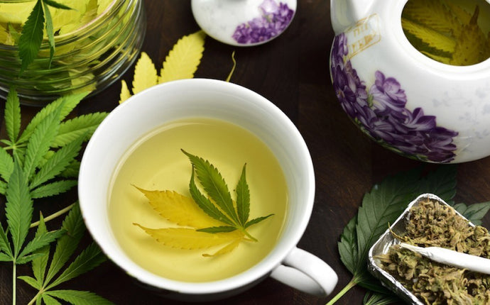 5 Reasons to Cure Chronic Illnesses with Cannabis Infused Tea