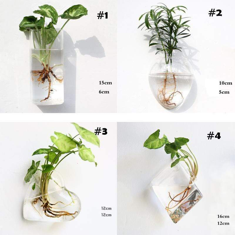 Wall-Mounted Clear Terrarium Flower Vases