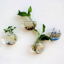 Load image into Gallery viewer, Wall-Mounted Clear Terrarium Flower Vases