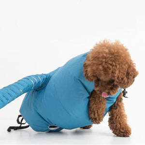 Dog Hair Drying Vest