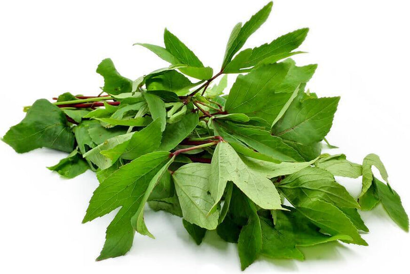 Gongura Leaves Bunches