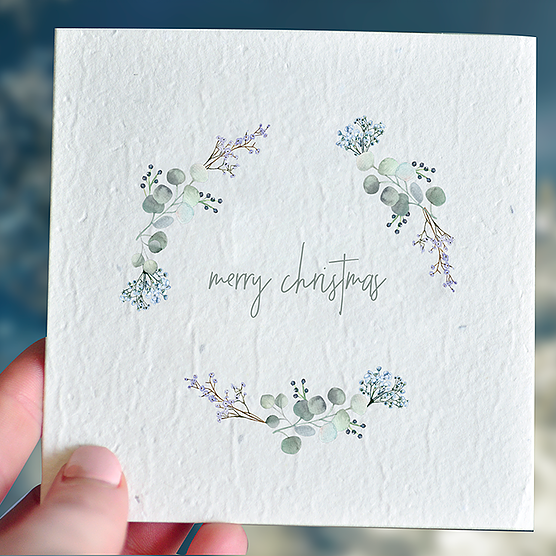 Christmas Plantable Gift Card - Frosty