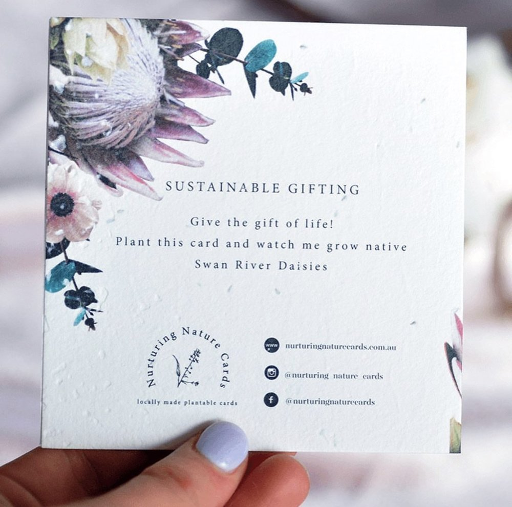 Plantable Gift Card - Protea
