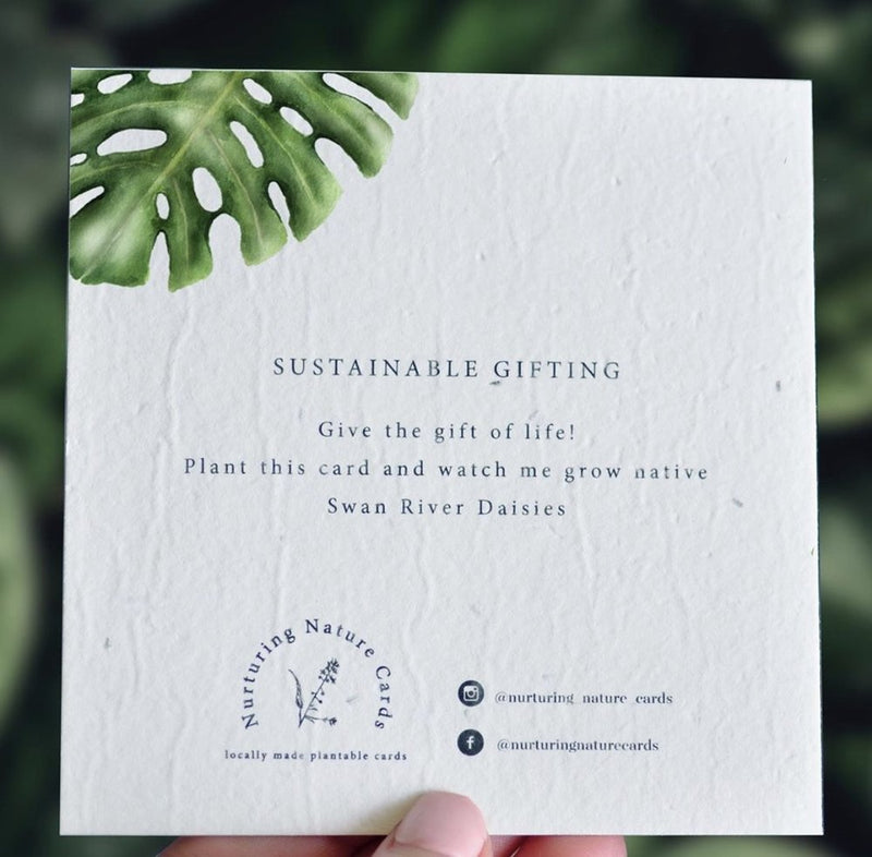 Plantable Gift Card - Tropic