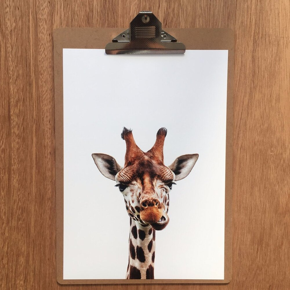 Print -  Giraffe Friend