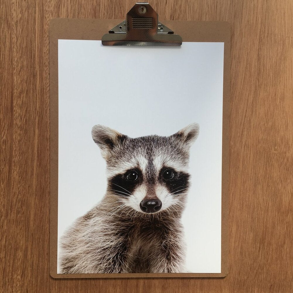 Print - Raccoon Friend