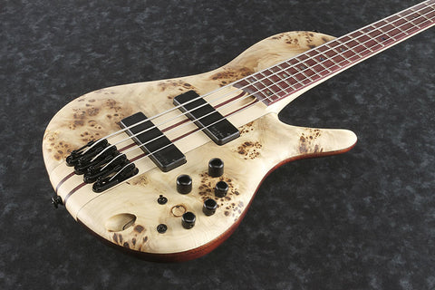 Ibanez Bass Workshop SRSC800 NTF - SR Single Cut - 4-string Bass - Natural Flat Finish