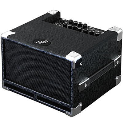 Phil Jones Pure Sound Combo Amp: BG-100 Bass Cub 100w Combo - 2x5""