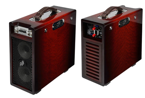 Phil Jones Pure Sound Combo Amp: BG-200S Briefcase Signature Model - 160w Bass Combo - 2x5""
