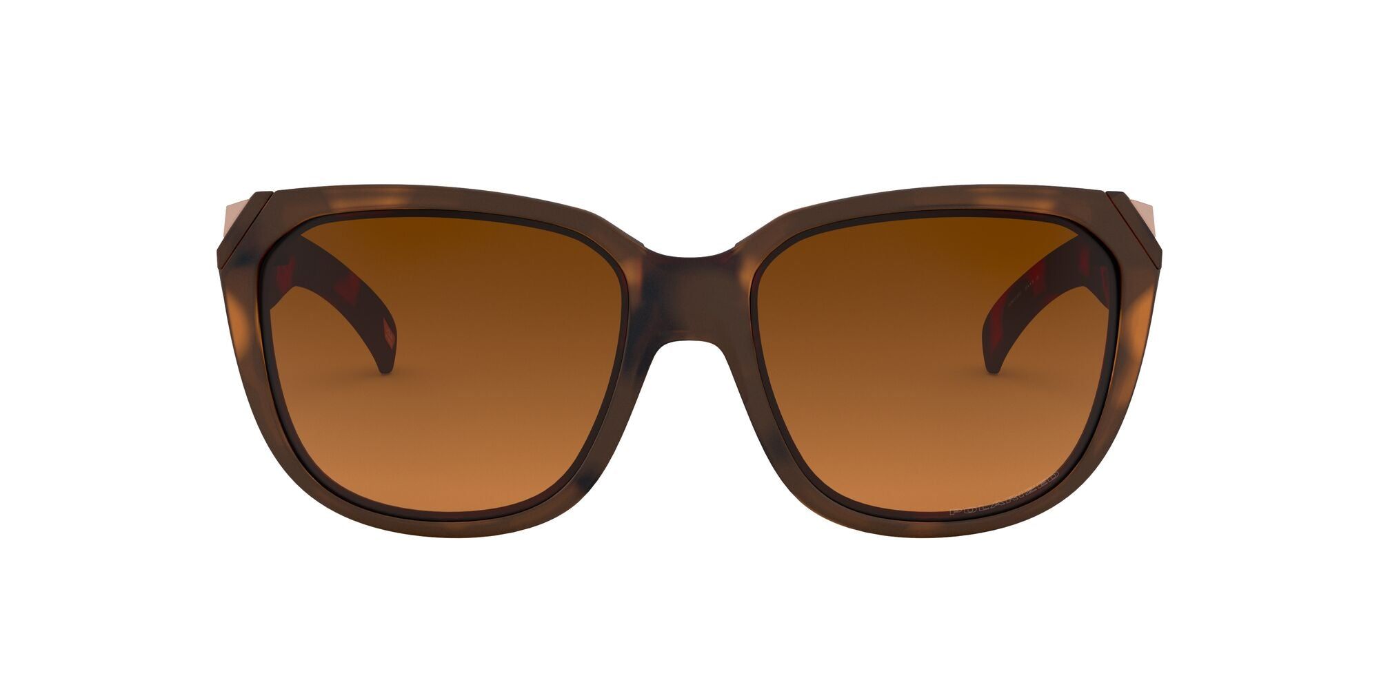 MATTE BROWN TORTOISE | POLARIZED