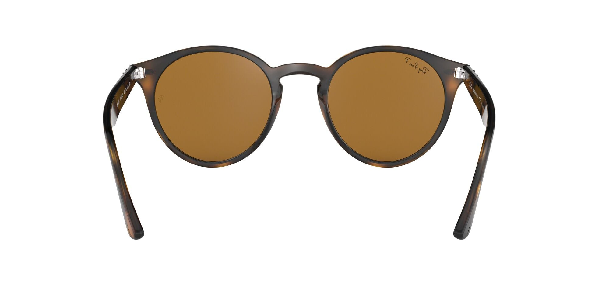SHINY DARK HAVANA | POLARIZED