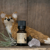 Little Fox Apothecary - Diffuser Blends
