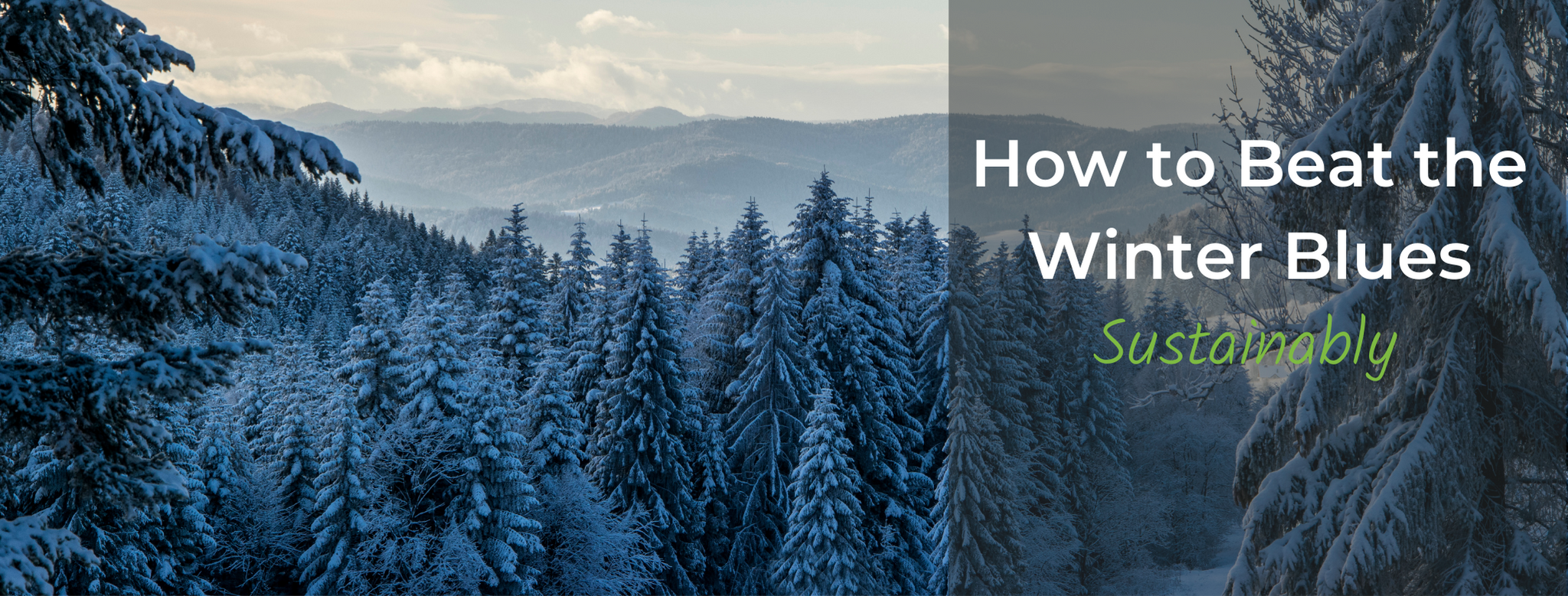 Top 5 Sustainable Ways to Beat the Winter Blues