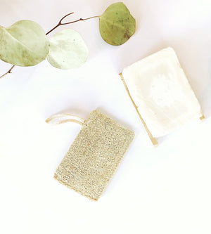 Double Layer Plastic Free Sponges (3 Pack )