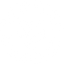 Let the Wild in Moto Collective