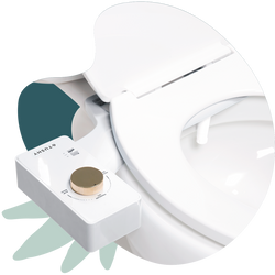 Modern Bidet Attachment