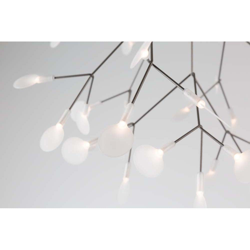 Heracleum Endless Chandelier