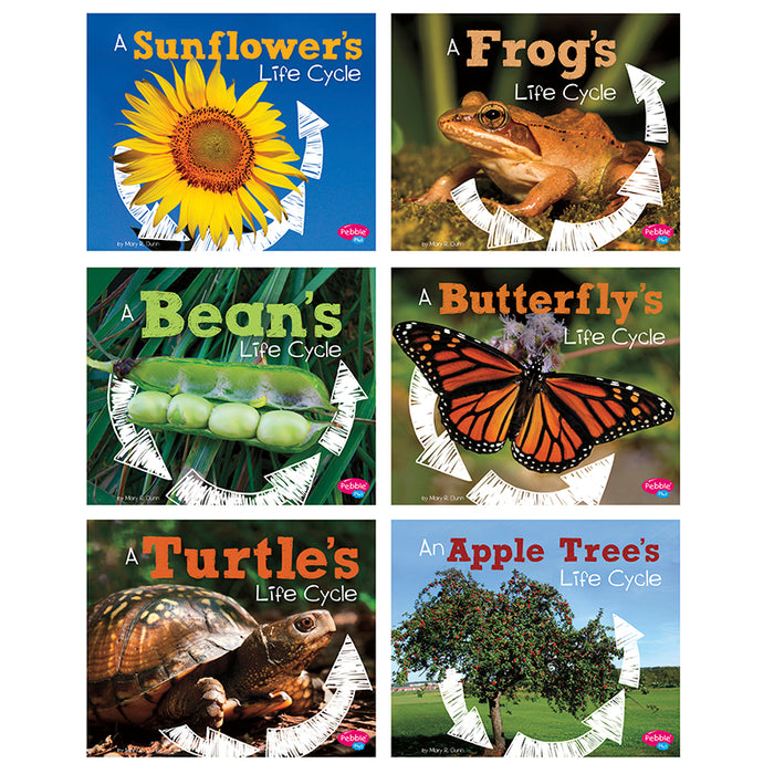 Our Amazing Senses St Of 5 Books - Supplies by Teachers