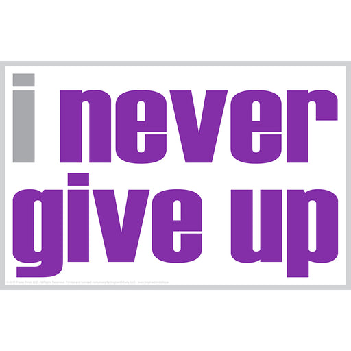 I Never Give Up Poster