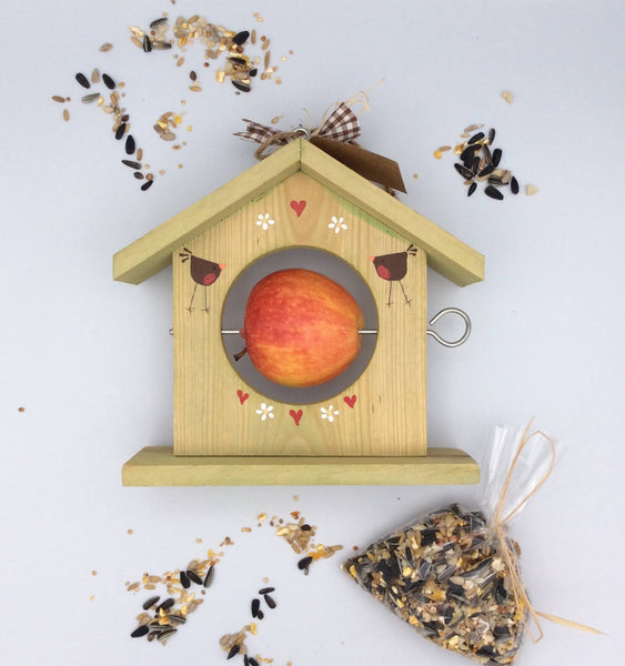 Hand painted bird feeder and bird seed gift