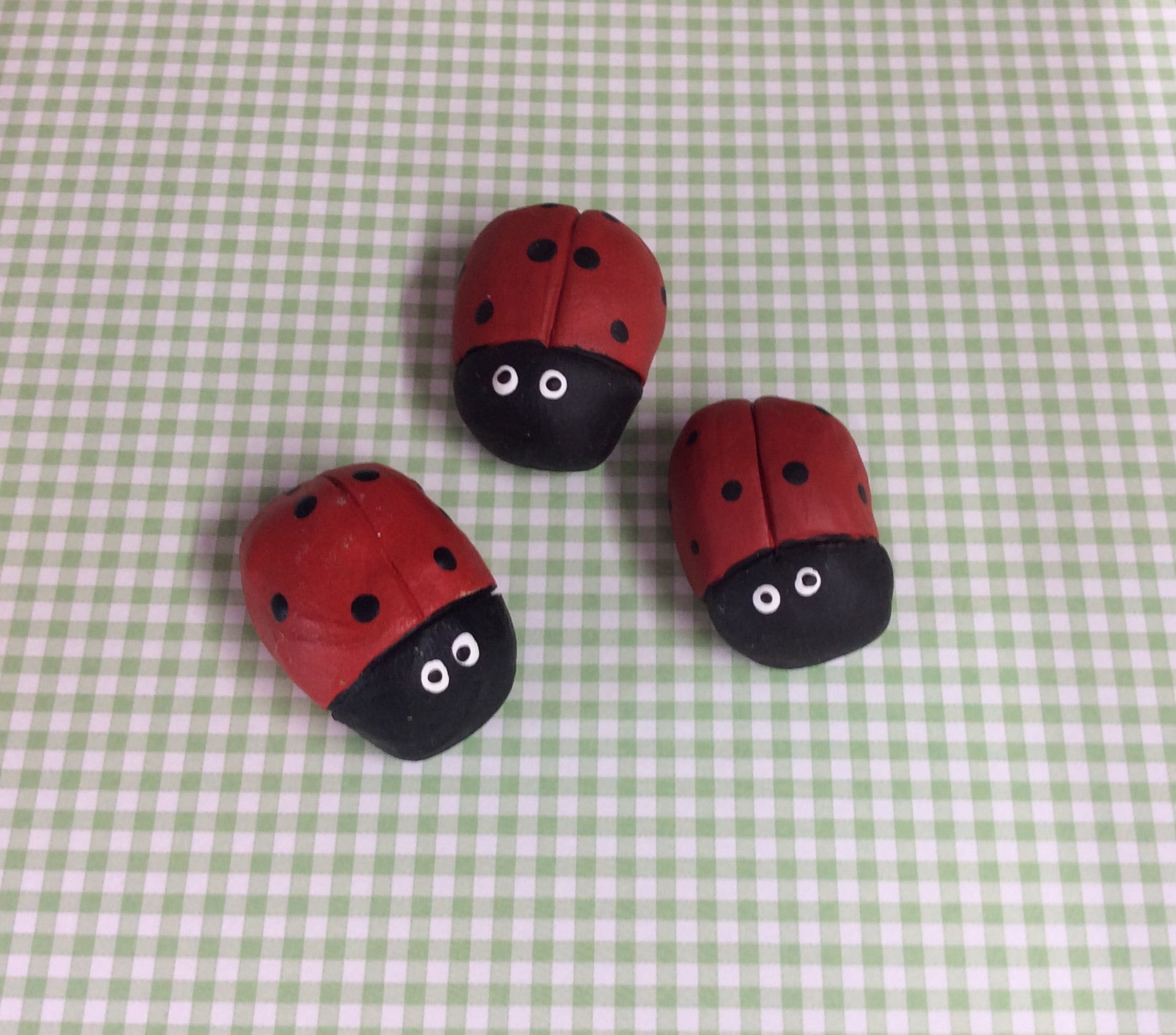 Set of three ladybirds