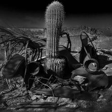 Load image into Gallery viewer, Model T with Saguaro
