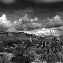 Load image into Gallery viewer, Clearing Winter Storm in the Ajo Mountains