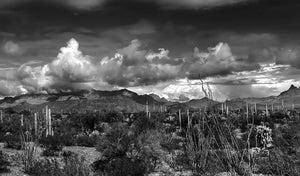 Clearing Winter Storm in the Ajo Mountains