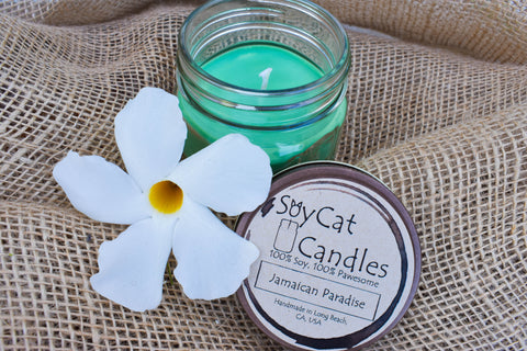 Jamaican Paradise Kitten Size Candle (4oz)