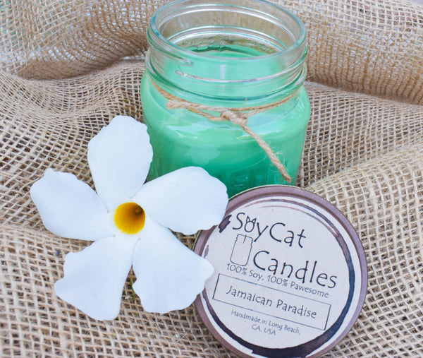 Jamaican Paradise Cat Size Candle (8oz)