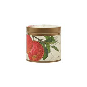 Rosy Rings Spicy Apple Candle Collection