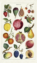 Load image into Gallery viewer, Fruit Tea Towel