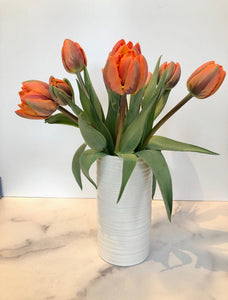 LOCAL ONLY: Tulips