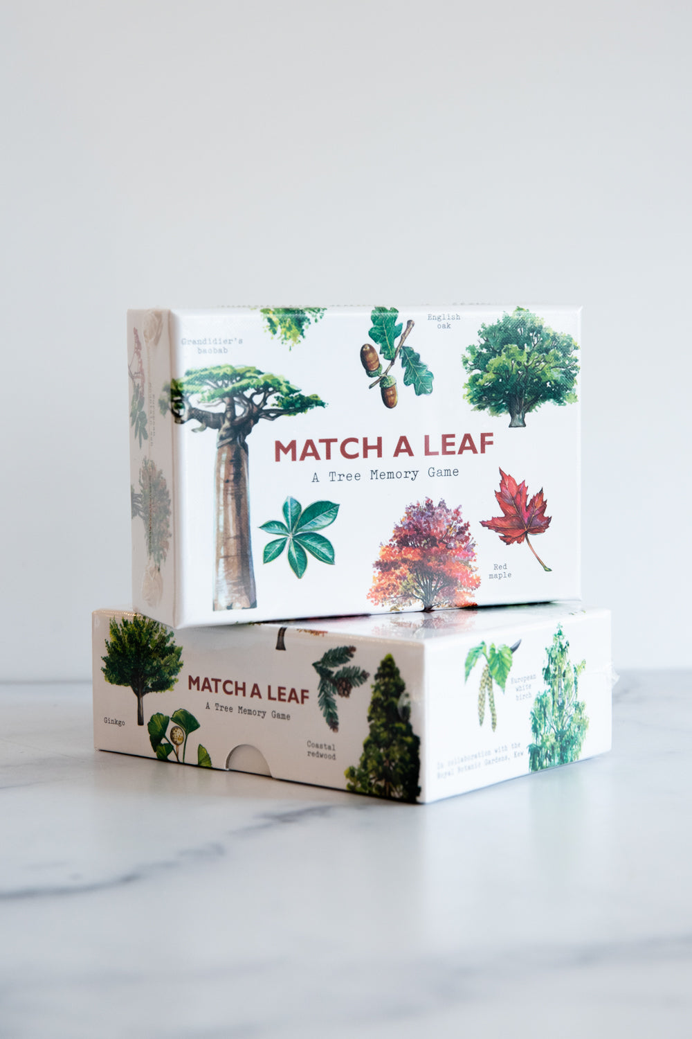 Match a Leaf: A Tree Memory Game