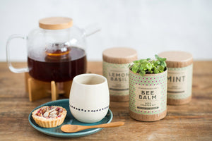 Kraft Starter Kit - Tea Series - seed starter