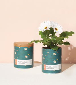 Flower Garden Kits - Waxed Planters