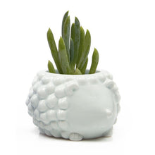 Load image into Gallery viewer, Ceramic Animal Planters