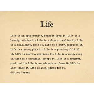 A Collection of Brilliant Quotations for a Beautiful Life