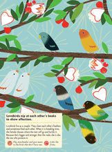Load image into Gallery viewer, My Nature Sticker Activity Book - Birds of the World by Olivia Cosneau