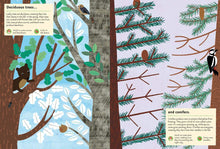 Load image into Gallery viewer, My Nature Sticker Activity Book - In the Forest:  By Olivia Cosneau